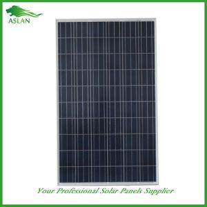 250W Poli painéis solares, Células Solares para venda