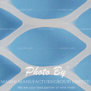 PEのプラスチック明白な網のプラスチック平らな網