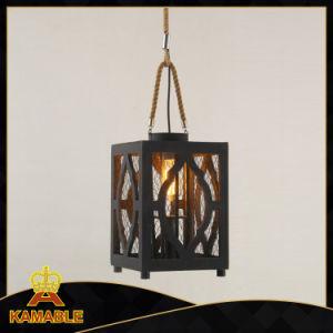 Dekorativer Innenhanf-hängende Lichter (KW0242P)