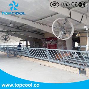 El Panel más eficiente el ventilador de 55 equipos agrícolas del ventilador de lácteos