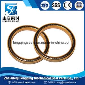 Muelle de acero inoxidable PTFE juntas energizado bronce