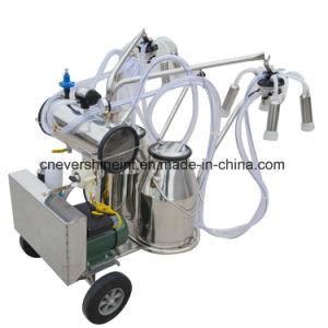 Gasoline+の電気真空ポンプの搾り出す機械二重タンク