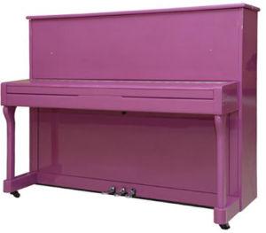 Instruments musicaux pourpres de piano droit de Schumann (E1-121)