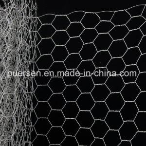 전기판에 의하여 직류 전기를 통하는 6각형 철망사/6각형 철사 그물세공 공장 가격