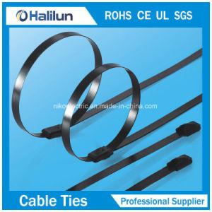 De alta calidad a bajo precio 9*300mm de acero inoxidable recubierto de PVC Self-Lock sujetacables