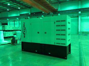 250kVA Cummins ha alimentato l'insieme di generazione diesel insonorizzato con Ce/ISO economico
