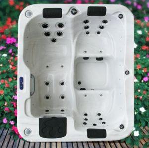 Baignoire SPA acrylique exquis avec les loisirs et le système de thermostat (A310)