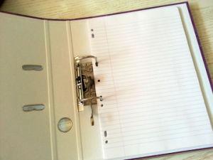 Het Dossier van de Boog van de Hefboom van de kwaliteit A4 pp met de Zak van het Etiket van de Stekel