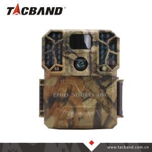 RoHS FCCのセリウムIR 16MP 1080P HD IP66のシカハンチングのための広角の野性生物の道のカメラ