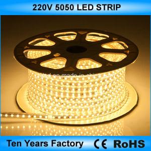 Striscia di tensione SMD 5050 110V 220V LED