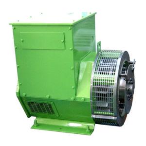 AC Brushless Alternator In drie stadia van de zelf-Opwekker (MG270)