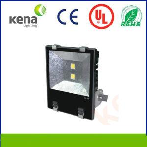Premie Quality Outdoor 10W-200W 50W LED Flood Light