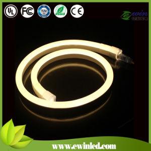mini LED luz de neón de 24V con la capa colorante del PVC (10*24m m)