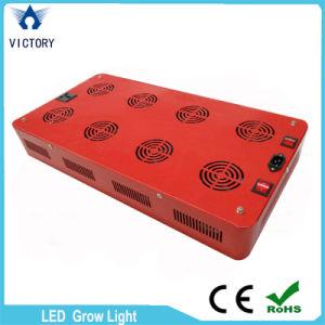 La PANNOCCHIA piena LED di spettro 600W coltiva l'indicatore luminoso