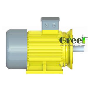 generatore magnetico di 3kw 200rpm, generatore magnetico permanente di CA di 3 fasi, uso dell'acqua del vento con il RPM basso