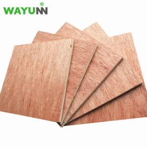 Álamo manufactura Okoume barniz para muebles de madera contrachapada marina comercial