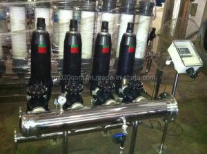 Filtro automatico dal Dick dell'acciaio inossidabile per il trattamento delle acque di irrigazione