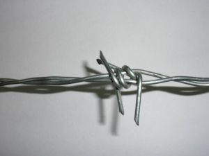 Filo galvanizzato in 1.6mm - 2.7mm per la barriera di sicurezza