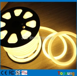 230V 25m Bobina de neón de LED blanco cálido de las luces de la cinta de opciones flexibles de 25mm redondo 100LED