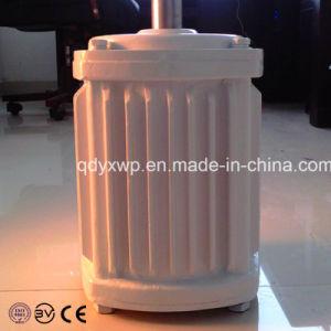 3Квт 48V/96V/110V ветровой турбины отключения генератора на поверхности сеточной системы