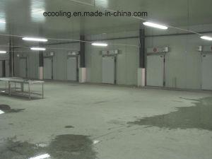 Kundenspezifisches kaltes Lager für Landwirtschafts-Produkt-Markt