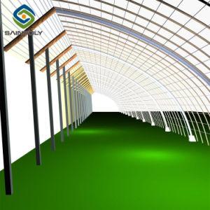 Serra solare del coperchio della pellicola per l'orticoltura