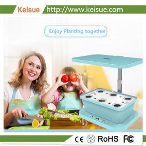 Keisue LED coltiva il micro fiore idroponico chiaro dell'azienda agricola/pianta di verdure