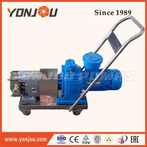 Yonjou 상표 고품질 회전자 펌프