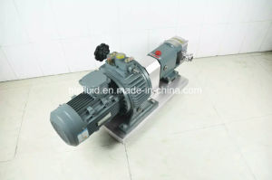 Rotar 로브 펌프|2 로브 회전자 펌프|회전하는 펌프