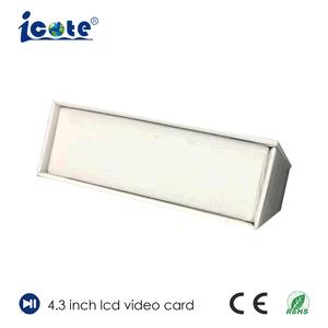 128MB-8GB 4.3 de VideoDoos van het Scherm van de Duim TFT LCD voor Pakket