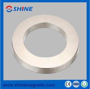 Magneti di anello sinterizzati del neodimio con nichelato