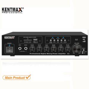 20W Pro Audio Stéréo Swiftlet Walet amplificateur d'accueil USB
