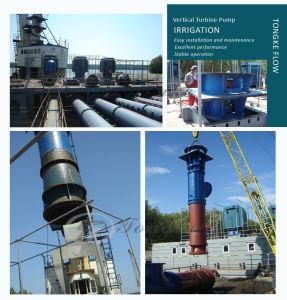 농업 관개 펌프 역 수직 터빈 물 공급 펌프