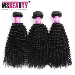 Het Mongoolse Kroezige Krullende Haar bundelt de Uitbreiding van het Menselijke Haar