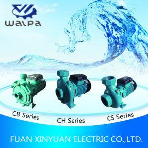 De Hoge Pomp van het Water van de Stroom HF-Ega Centrifugaal met Goedkope Prijs