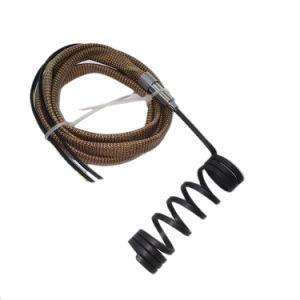 Molde de inyección de calefacción de la bobina de canal caliente