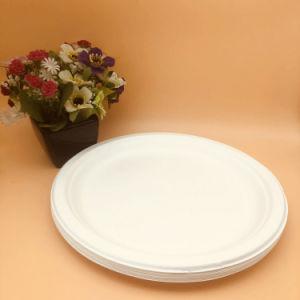 Nouveau produit vaisselle jetable biodégradable contenant des aliments de bagasse