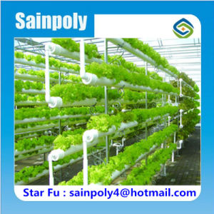 Usa agrícola Sistema completo de efecto invernadero hidropónico