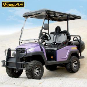 Heißer Verkauf 4 Seater angehoben, Reifen-elektrische Golf-Karre jagend