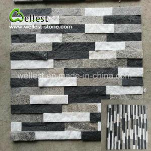 壁カバーのための現代簡潔な様式の黒く及び白い珪岩文化石の棚の石