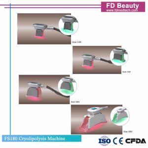 FDA Cryolipolysis Lipofreeze 뚱뚱한 감소 기계