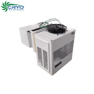 Sistema de Refrigeração monobloco Pequena caminhada congelador frias de armazenagem em frio