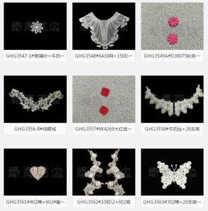 女性の衣服のアクセサリの刺繍のPatchsの装身具