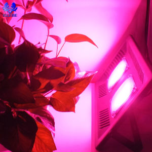 À prova de promoção IP67 COB Full Spectrum 100 Watt crescer a luz de LED