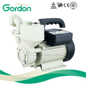 Série Wzb rotor en laiton à amorçage automatique Vortex pompe de pression de ménage