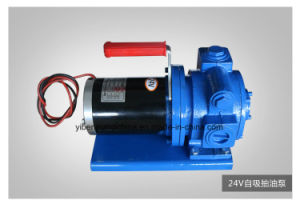 12V 전기 디젤유 펌프 또는 디젤유 Pumps/12V 기름 펌프
