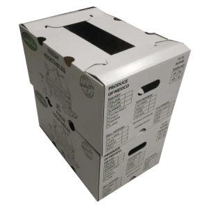 فاخر جديدة تصميم ثمرة بيضاء يغضّن صندوق