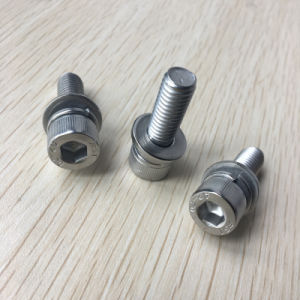 Combinaison en acier inoxydable écrou de vis à vis rondelle détermine vis SEM