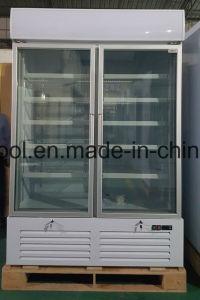 Congelatore di frigorifero dritto del portello due di vetro per il gelato