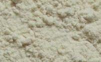 ニンニクの粉の白く低いマイクロ